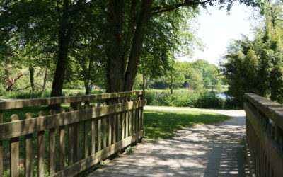 Travaux d'aménagement à venir : allées autour du lac, aire de jeux et cimetière