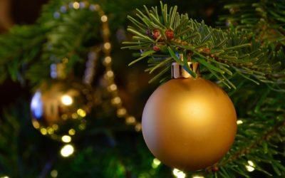 Vacances de Noël : les programmes de l'Accueil de Loisirs, de l'Anim'ados et du Multisports sont en ligne